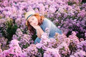 Ngỡ ngàng với vườn hoa thạch thảo tím lịm ở Vũng Tàu